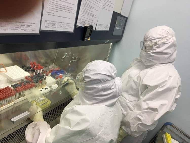 Орон нутагтаа коронавируст халдварыг оношлох боломжтой боллоо